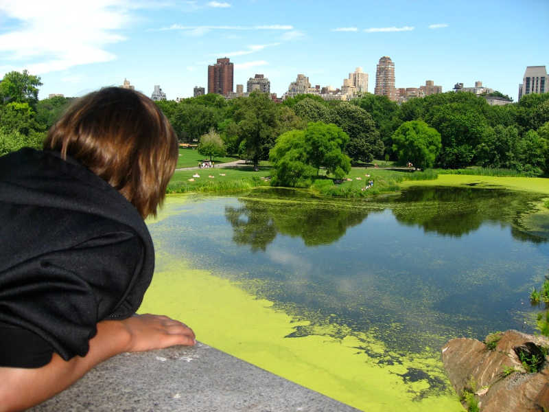NEW YORK CITY: Central Park with Kids | THEWANDERINGHOUSEWIFE.COM