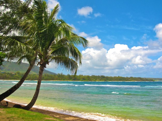 HAWAII: North Shore Kauai Beach | THEWANDERINGHOUSEWIFE.COM