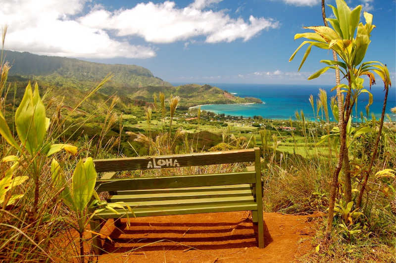 Hike Hanalei Mountain in Kauai — Solitude on Solo Travel to Kauai | THEWANDERINGHOUSEWIFE.COM