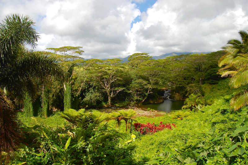 Kauai Hindu Monastery | THEWANDERINGHOUSEWIFE.COM