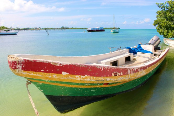 BELIZE: Colorful Caye Caulker Tips | TheWanderingHousewife.com