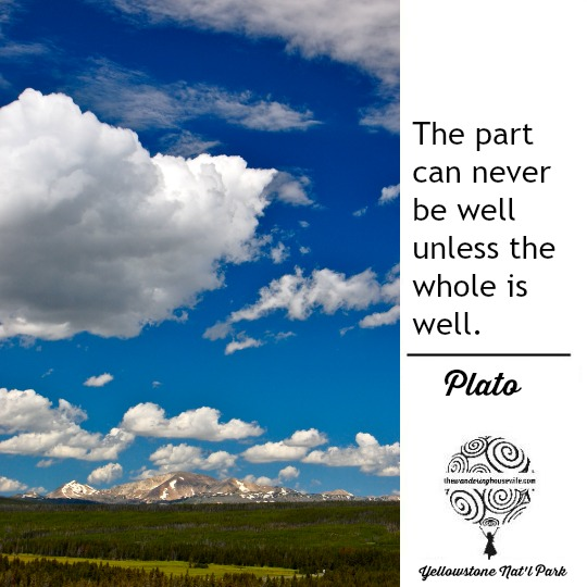 Plato quote | TheWanderingHousewife.com