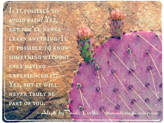 Paulo Coelho quote | TheWanderingHousewife.com