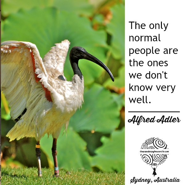 There is no normal. | TheWanderingHousewife.com
