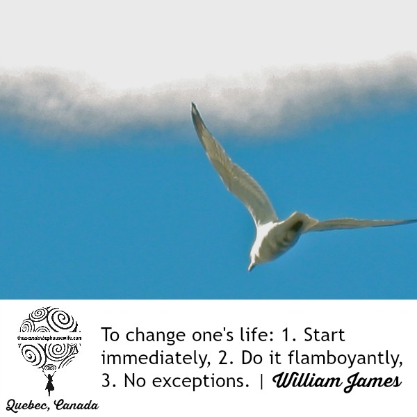 Change your life. | TheWanderingHousewife.com
