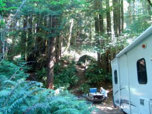 mill_creek_campground-300x225