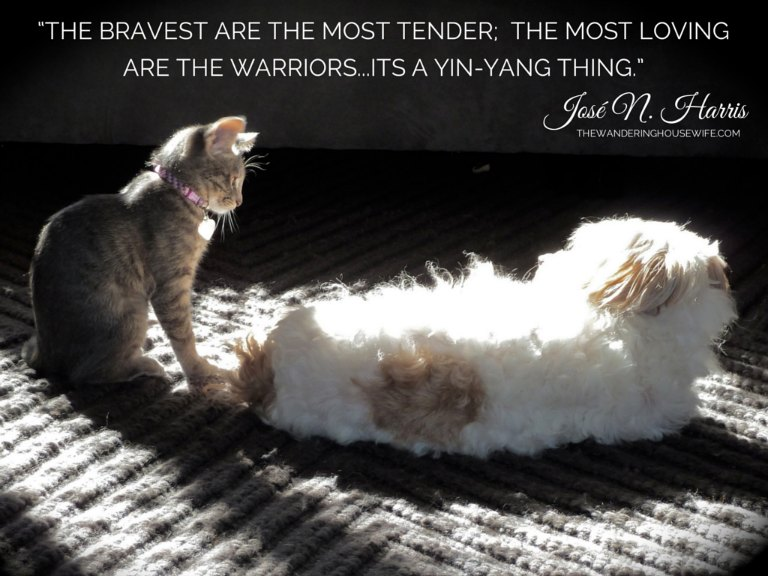 Bravery quote | TheWanderingHousewife.com