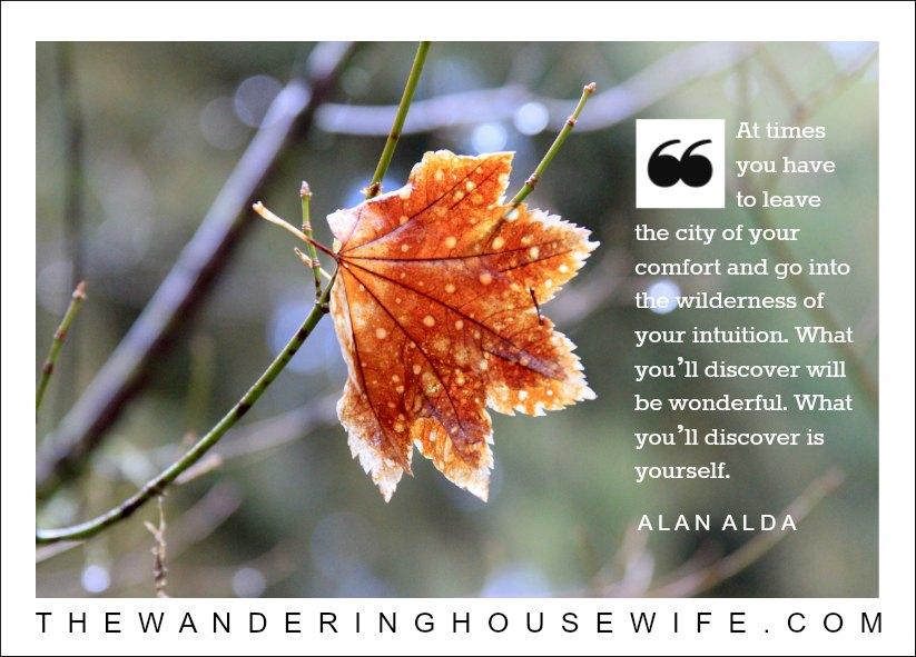 Alan Alda quote | TheWanderingHousewife.com
